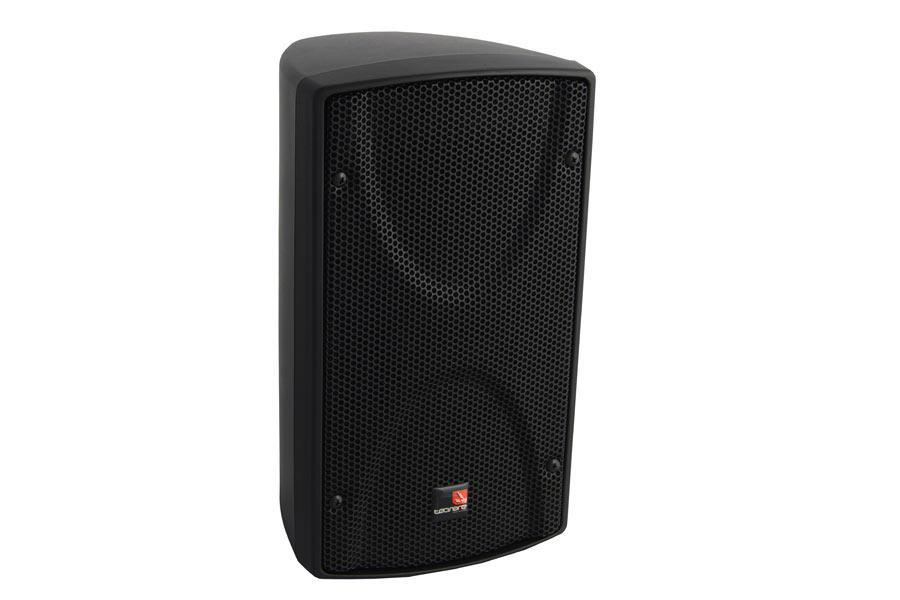 Tecnare-Ibza-P204-speaker-front-view